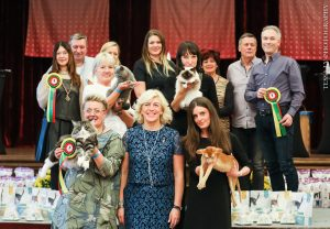 Starptautiskā jubilejas kaķu izstāde Viļņā, Lietuvā, FIFe